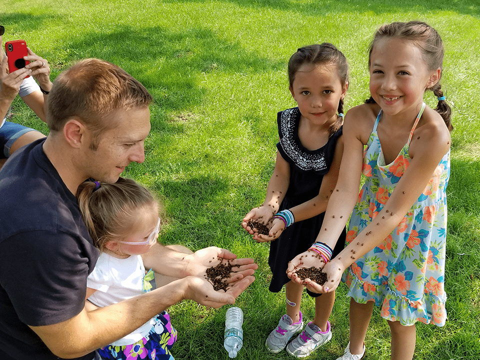 Ladybug Release Events Children