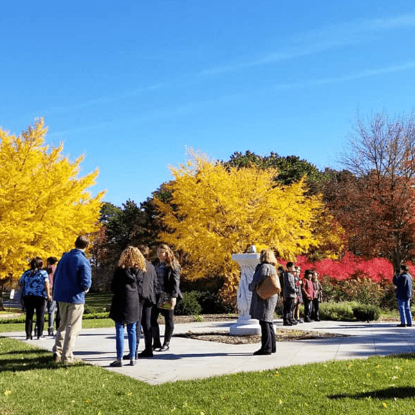 Fall Foliage Events
