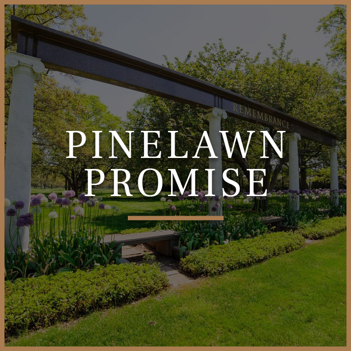 Pinelawn Promise Button