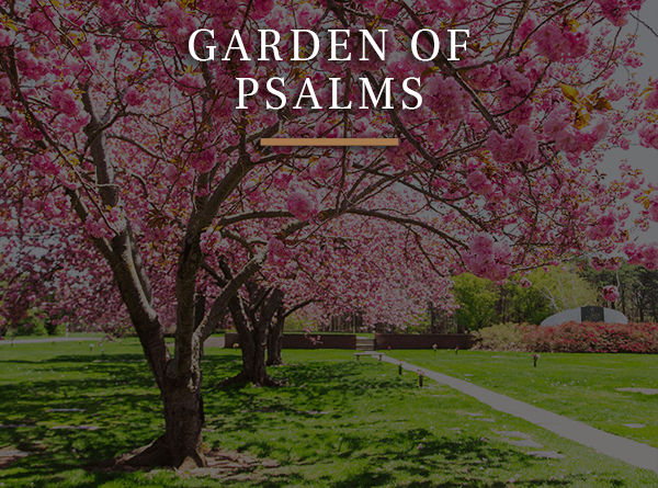 Garden of Psalms Cherry Blossom Hover button