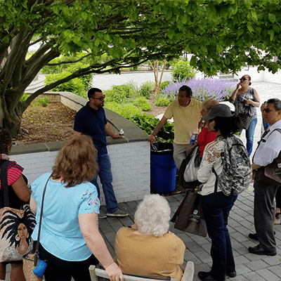 People gathered in Pinelawn's courtyard for 3rd annual arboretum tour