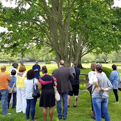People listening to expert in front of tree at 3rd annual arboretum tour