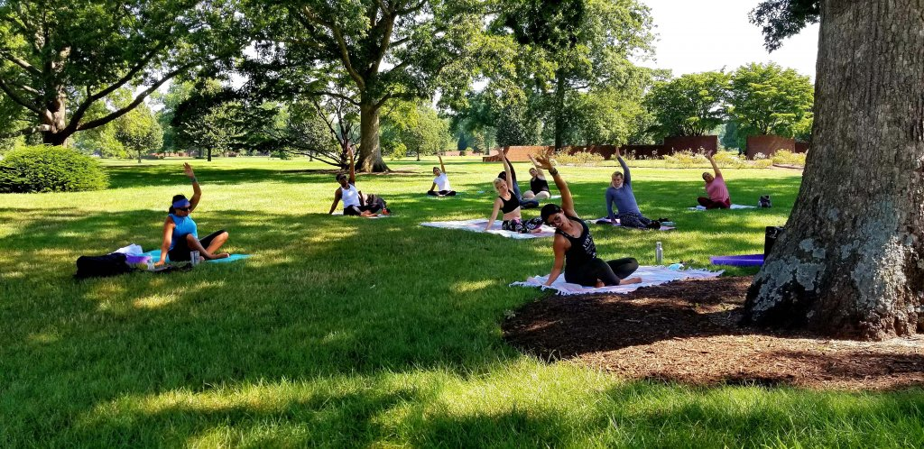 People doing yoga outside under trees
