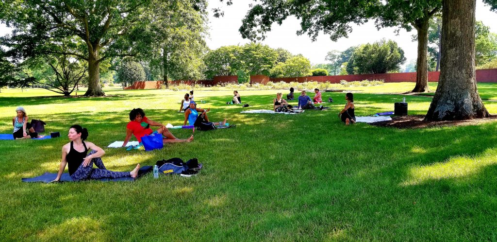 People stretching in yoga post on grass under trees
