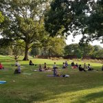 Group of people doing yoga on grass under trees