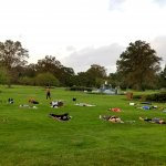 people doing yoga on grass