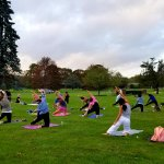 group of people doing yoga on grass surrounded by trees