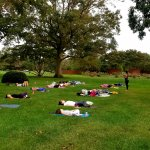 people outside on grass doing yoga