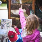 children pointing at honey bees