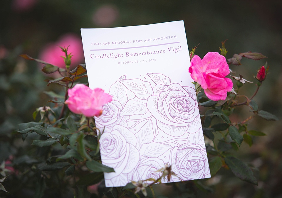 candlelight vigil flyer in pink rose bush with roses